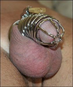 Male Chastity Devices Cock Cages Online